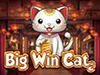 bigwin-cat-slot