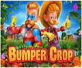 bumper-crop slot
