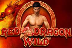 red-dragon-wild