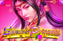 samurai princess slot machine online