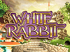 white rabbit slotmachine