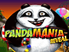 Pandamania reveal