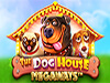dog house nuova slot